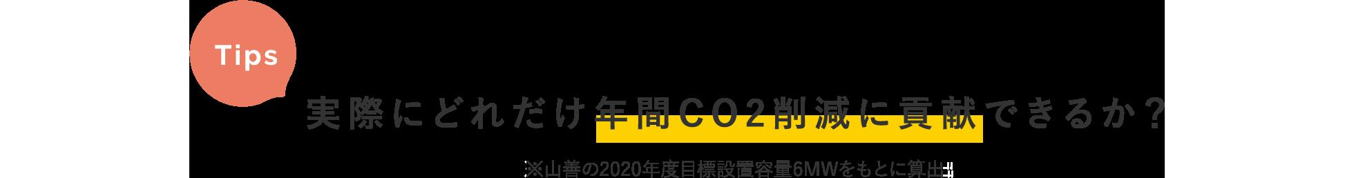 Tips / 実際にどれだけ年間CO2削減に貢献できるか?