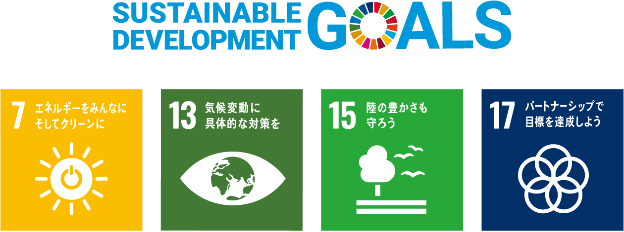 SUSTAINABLE DEVELOPMENT GOSLS  / SDGs